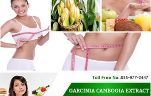 Weight loss is one of the major concerns of people. Thus, garcinia cambogia comes into great help. Where to order garcinia cambogia is not a worry anymore. One can order it easily online.